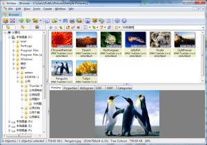 看图软件|XnView v2.37 Lite精简版