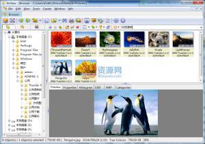 看图软件|XnView v2.38 Lite精简版