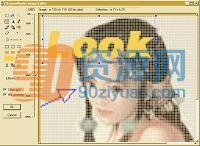 ScreenHunter Pro v7.0.931