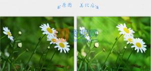 2345看图王 v8.0.1.8004