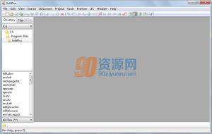 文本编辑EditPlus v4.20 Build 1132